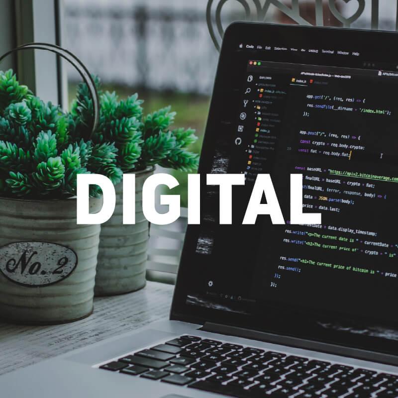 MIDDNIGHT Leistungen Digital